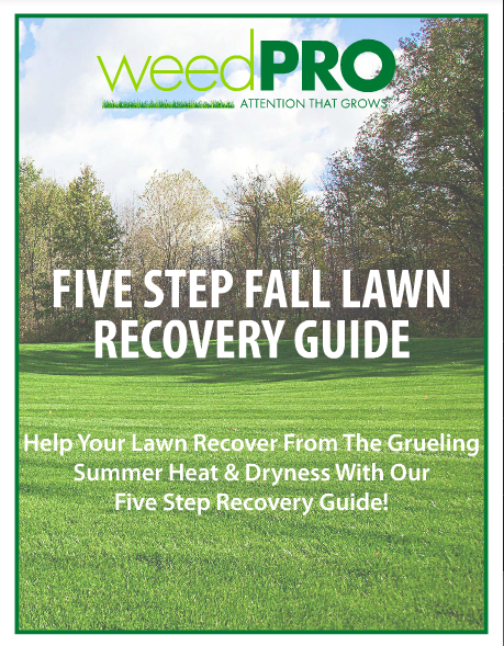 Fall_Recovery_Guide