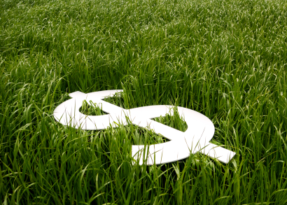 Why is Organic Lawn Care More?