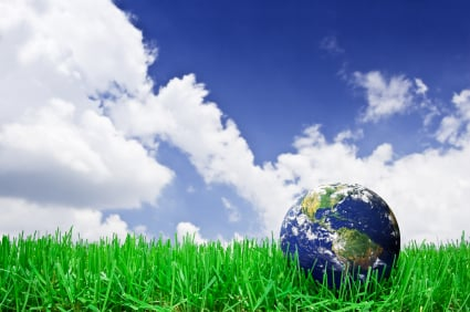 Professional Lawn Care Services - Better for the Environment