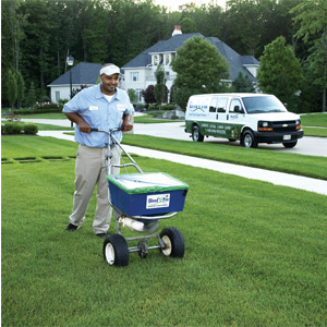 lawn care mistakes