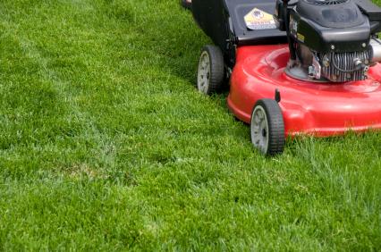Choosing the Right Mower
