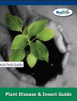tree-shrub-pest-guide-r