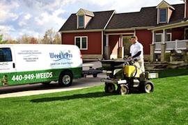 lawn fertilizing