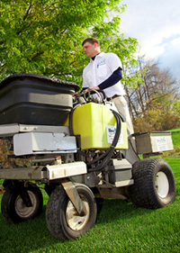 Aerate Lawn