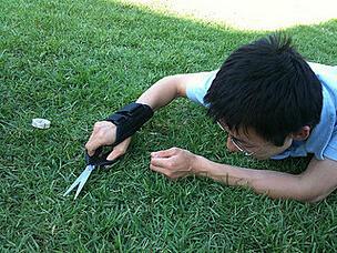 DIY Lawn Care