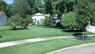 great lawn care companies