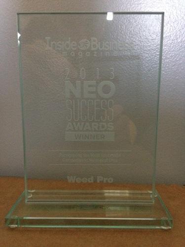 neo success award weedpro