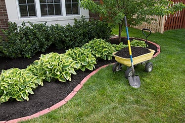 landscape weed control