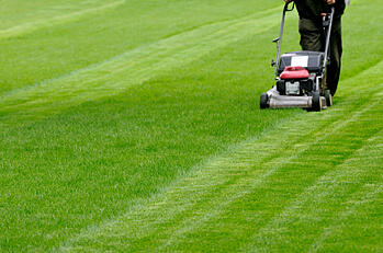 spring lawn care mowing tips