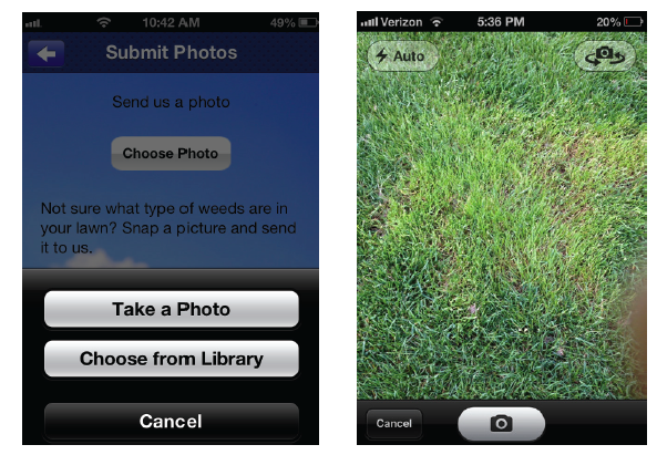 Mobile App Sumbit Photo