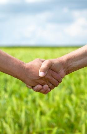 hiring a lawn fertilizer company