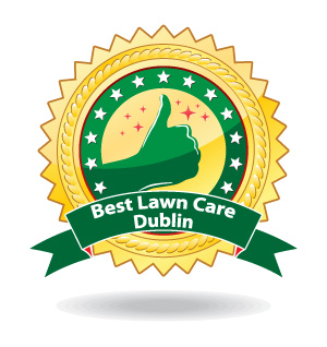 best lawn care dublin ohio