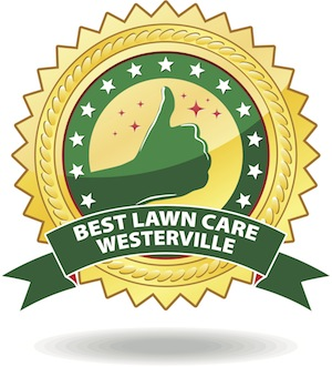 best lawn care company westerville