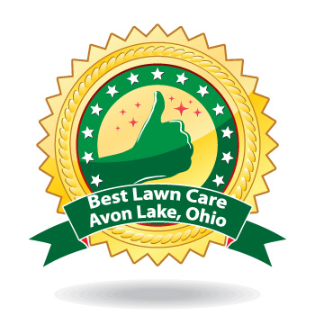 best lawn care avon lake ohio