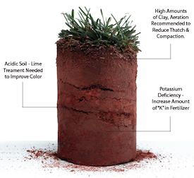 soil_testing_lawn_care