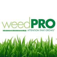 Weed-Pro-Avatar