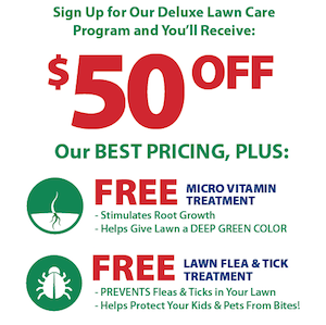 50off_2_free_lawn_treatments