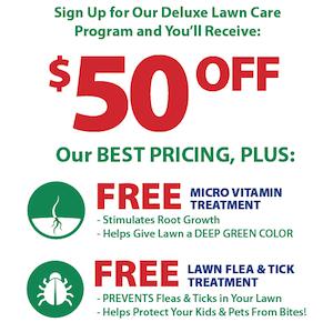 50off_2_free_lawn_treatments