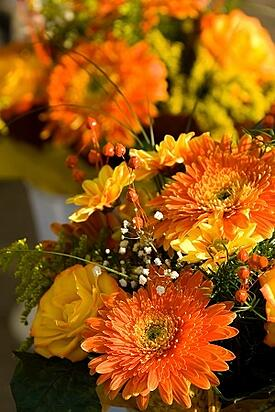 Fall_Planting