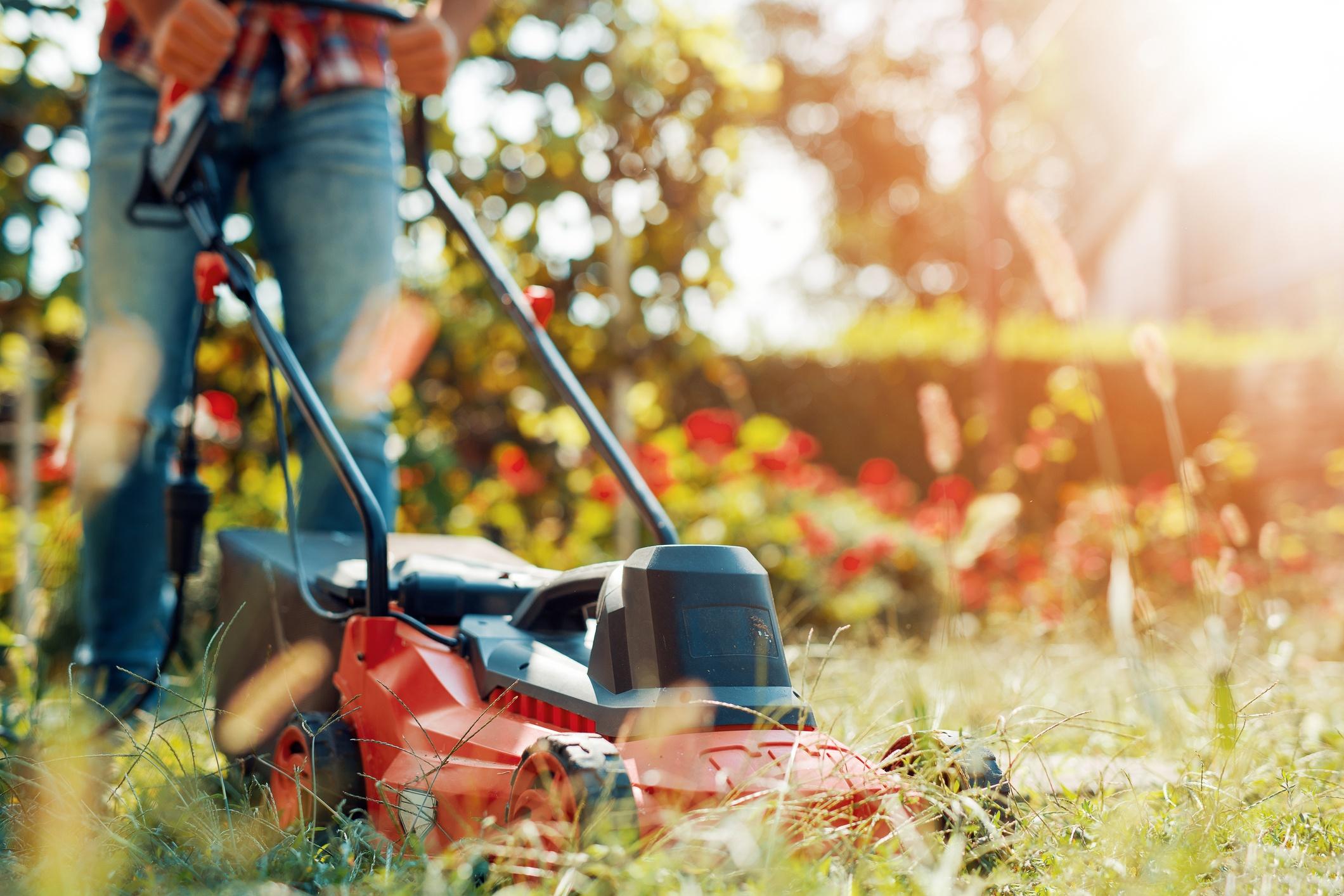 Lawn-Mowing-Early-Spring.jpg