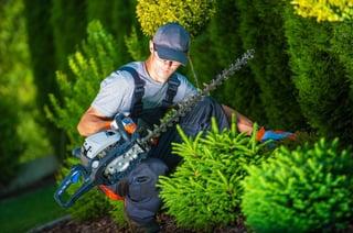 Lawn_Care_Options_Grove_City.jpg