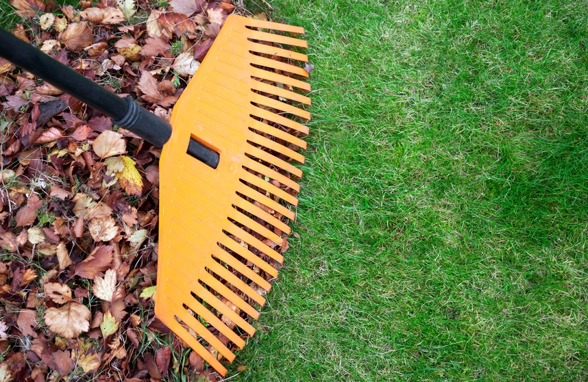 Prepare_Your_Lawn_for_Fall.jpg