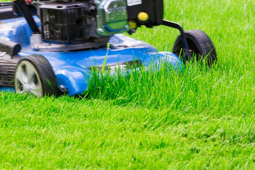 Recommended_Lawn_Treatments_in_Columbus.jpg