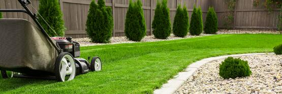 Spring-Lawn-Care-Crab-Grass-Preventer.jpg