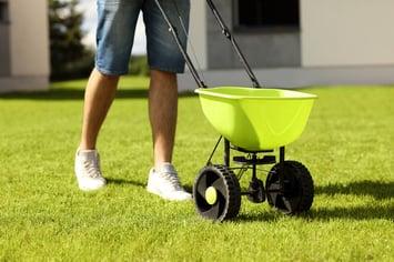 Spring-Lawn-Fertilizer.jpg