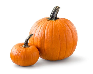 Top Five Pumpkin Recipes.jpg