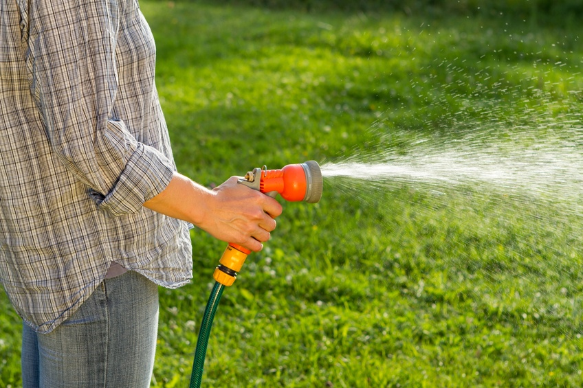 best_ways_to_water_your_lawn.jpg