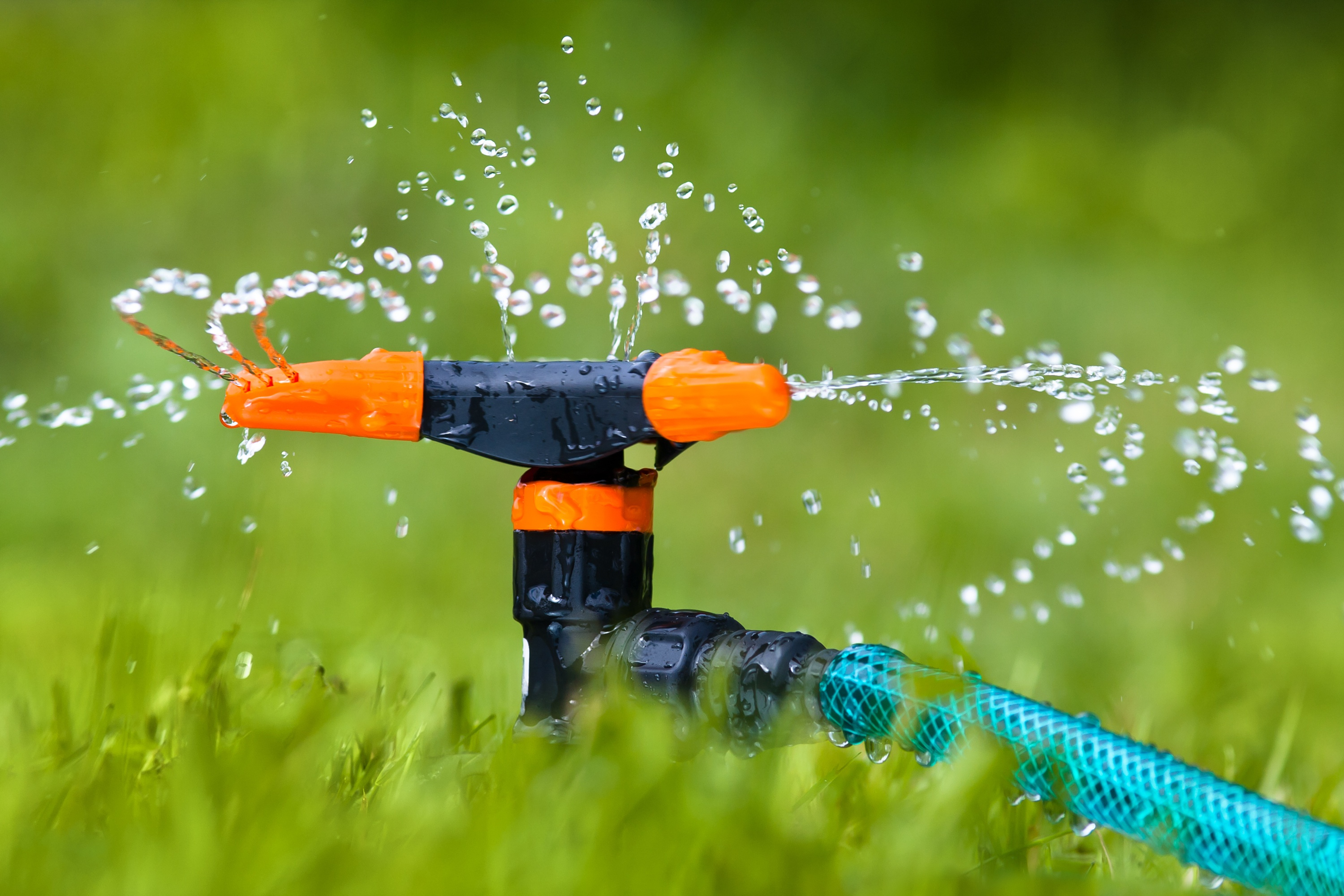 proper-lawn-watering-during-extreme-heat.jpg