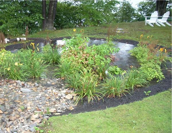 water-conservation-rain-garden.jpg