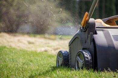 lawn-aeration-services