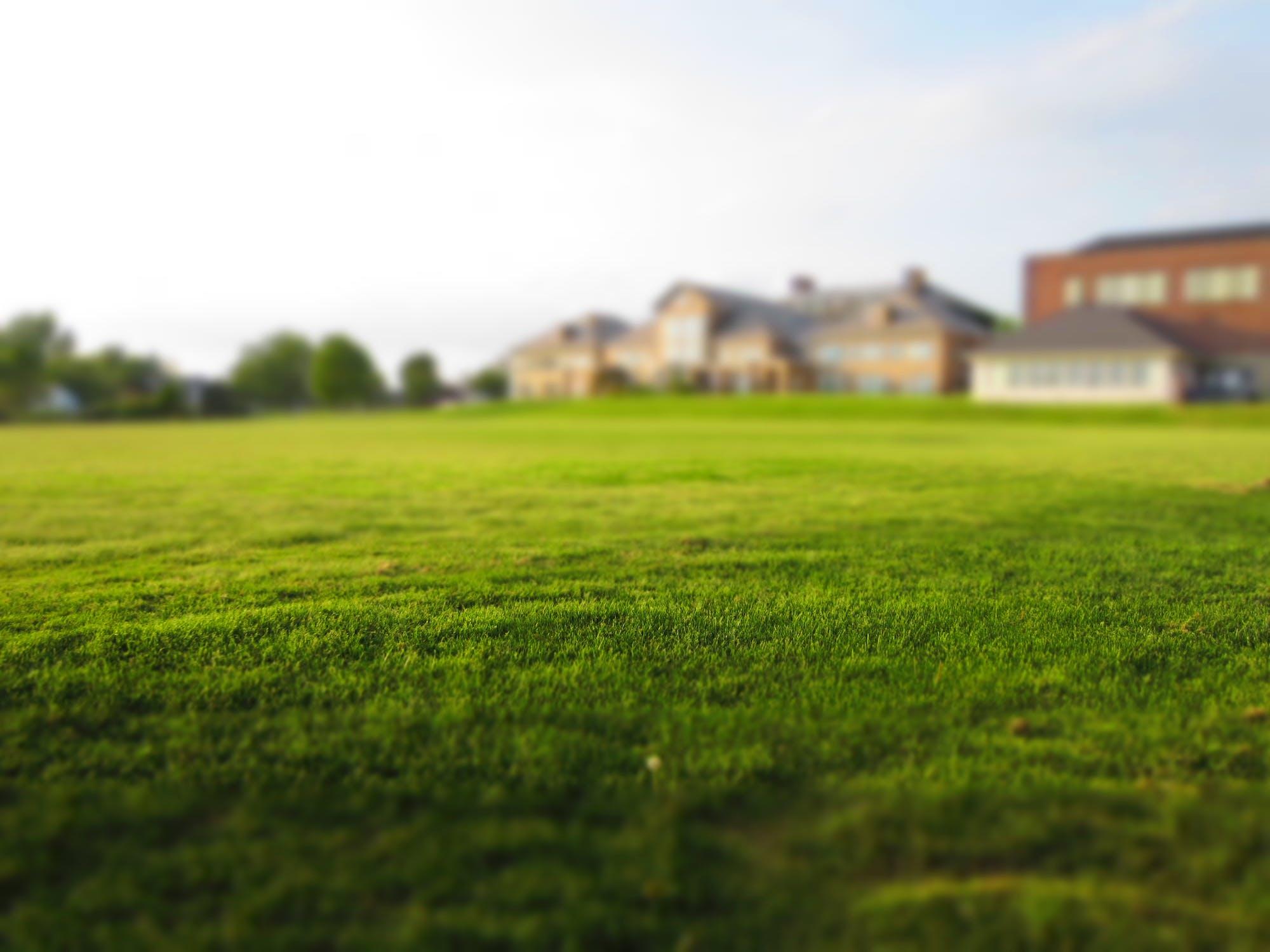 lawn-care-companies-eaton-ohio