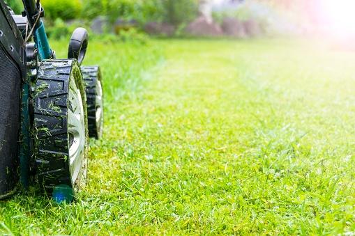 lawn-care-companies-elyria-ohio