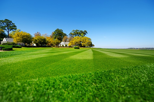 lawn-care-companies-south-amherst