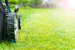 lawn-care-companies-north-ridgeville