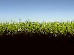 lawn-soil-2