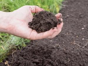 lawn-soil