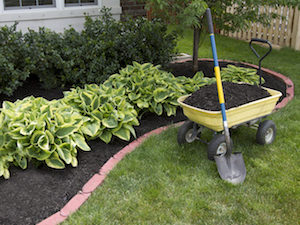mulching-yard