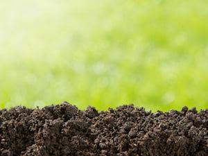 pile-lawn-soil