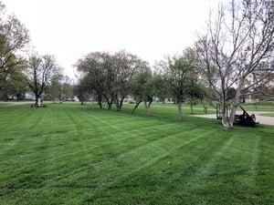 sheffield-lawn-care