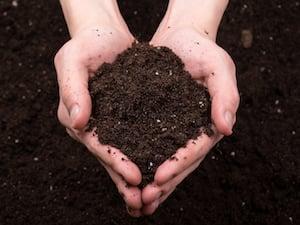 soil-fertilizer