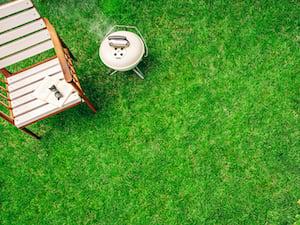 summer-yard