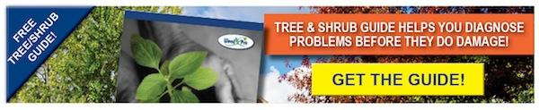 Free Tree & Shrub Disease Guide