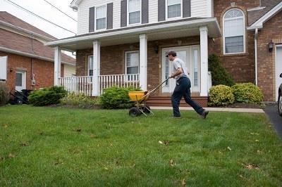 Fertilizing_Lawn