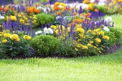 Flowers-Spring_Planting