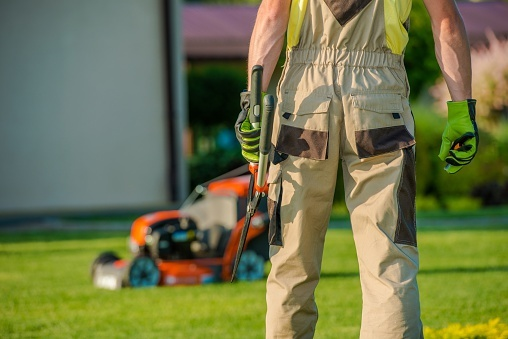 Finding the Best Local Lawn Care Services
